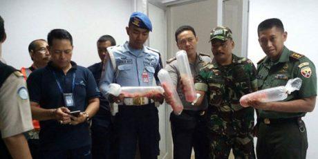TNI Bongkar Sindikat Penyelundupan Benih Lobster